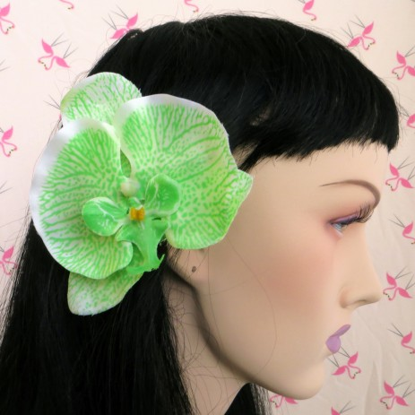 Flat Orchid Hair Flower - Green - by Miss Fortune