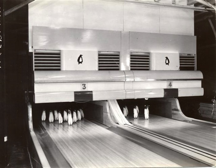 Bowling in Antarctica